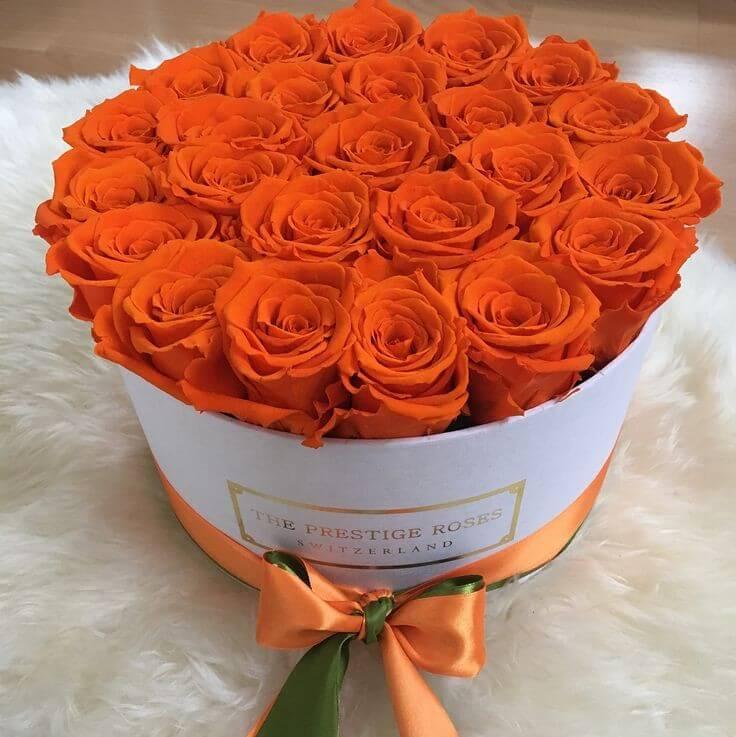 caja-flores/005.jpg