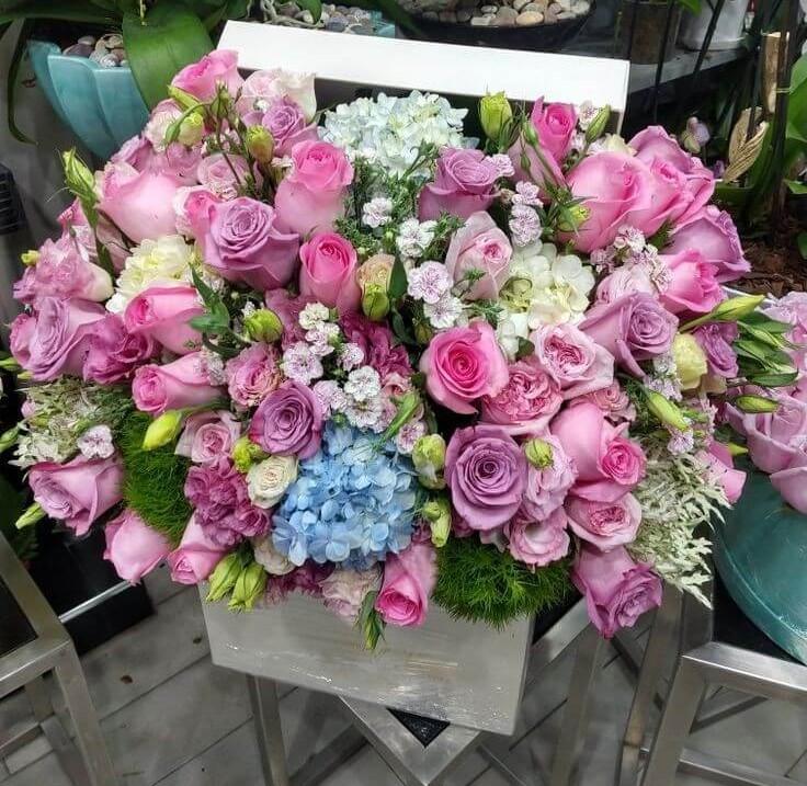 caja-flores/026.jpg